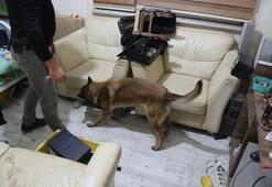 Bin polis katıldı Bursada şafak operasyonu...