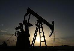 ABDde petrol sondaj kule sayısı 2 adet arttı