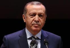 Cumhurbaşkanı Erdoğan Wall Street Journala yazdı: Diğerleri harekete geçmekte başarısız olunca Türkiye adım attı