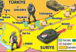 Ayn el Arap nerede Ayn el Arapa Kobani adı neden verildi