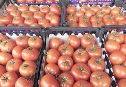 9 ayda 2,2 milyon ton yaş sebze meyve ihraç edildi