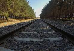 Etiyopya ile demir yolu sektöründe iş birliği geliştirilecek