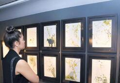 Folkart Gallery'nin 14'üncü sergisi açıldı
