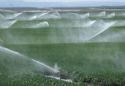 Modern sulama tarımda verimliliği artırıyor