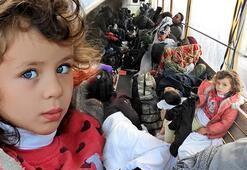 Çeşmede 313 düzensiz göçmen yakalandı