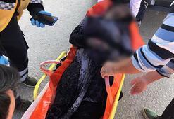 Son dakika... Uşakta facia 3ü çocuk 4 kişi hayatını kaybetti