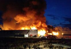 Korkutan fabrika yangın