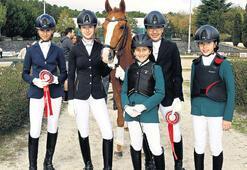 At Terbiyesi için yarıştılar
