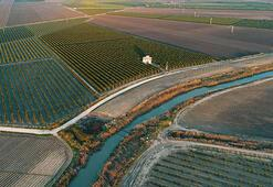 Tarımsal arazilerin alım satımı için veri tabanı