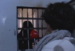 DHA, DEAŞlı teröristlerin yargılamalarını Afrinde izledi