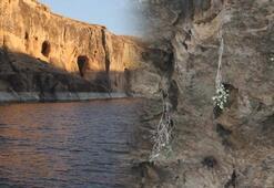 Dünyanın en yeni kanyonuna tekne turları başladı