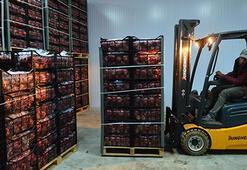 Gıda enflasyonuyla mücadele için soğuk depo zincirlerine destek