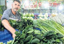 Türkiye genelinde ıspanak tedirginliği yaşanıyor Yabani otlar zehirlemiş