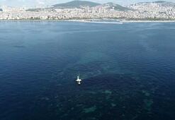 İstanbulda depremlerle battı Vordonisi adası havadan fotoğraflandı