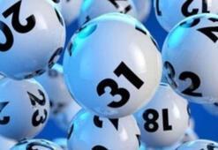 Şans Topu sonuçları sorgula | 6 Kasım 2019 Şans Topu numaraları...