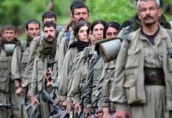 PKKnın kirli yüzü uluslararası BM raporlarda