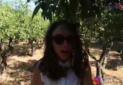 Şebnem Burcuoğlu: Süreya Kuaför Salonu Bölüm 3