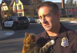 Röportaj sırasında polisin üzerine sokak kedisi atladı