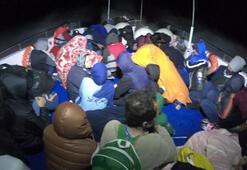 Çanakkalede 84 kaçak göçmen yakalandı