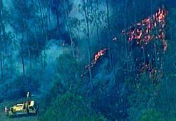 Avustralyadaki yangınların bilançosu ağırlaşıyor