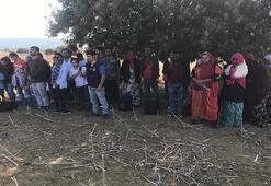 Çanakkalede 39 kaçak göçmen yakalandı