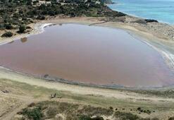 Kalp şeklindeki pembe göl için çalışmalar başlıyor