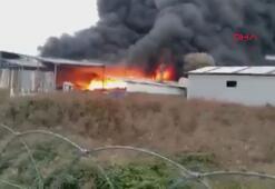 Sakarya'da geri dönüşüm fabrikası alev alev yanıyor