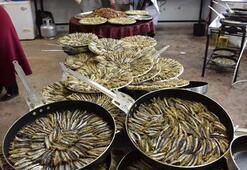 Orduda 10 ton hamsi tüketildi