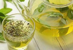 Yeşil çayın faydaları nelerdir Yeşil çay neye iyi gelir