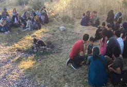 Çanakkalede 43 kaçak göçmen yakalandı