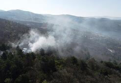 Bursadaki orman yangınında 10 dönümlük alan zarar gördü