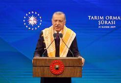 Cumhurbaşkanı Erdoğan müjdeleri sıraladı