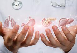İç hastalıkları nedir, neye bakar Dahiliye bölümü doktoru hangi hastalıklara bakar