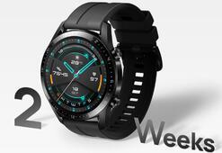 Huawei Watch GT 2 özellikleri nedir Fiyatı ne kadar