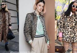 Leopar desenli paltoların modası geçiyor mu