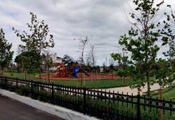 İBB, ünlü sahilin parkını satışa çıkardı