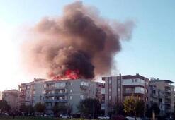 Korkutan yangın Alev alev yandı