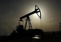 ABDde petrol sondaj kulesi 5 adet azaldı