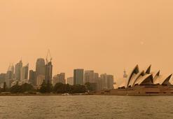 Mega yangın Sydneye sokuldu