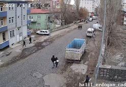 Liseli kızı zorla minibüse bindirip... Sadece 500 metre
