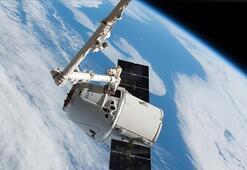 SpaceXin süper fareli kargosu Uluslararası Uzay İstasyonuna ulaştı