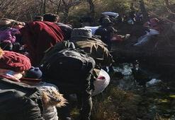 Çanakkalede  32 kaçak göçmen yakalandı