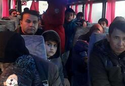Çanakkalede minibüste 50 kaçak göçmen yakalandı