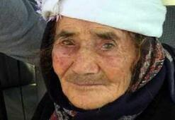 Kurdun saldırdığı yaşlı kadından acı haber