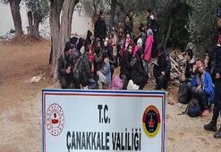 Peş peşe 5 operasyon Toplam 201 kişi yakalandı