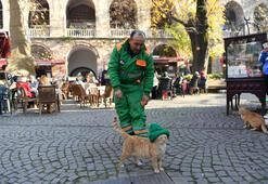 Hayvansever temizlik işçisi soğuk havada beresini kedi ile paylaştı