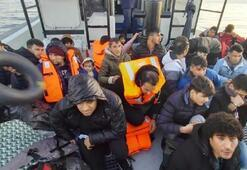 2 ilde 80 göçmen yakalandı