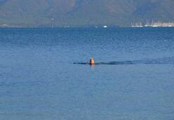 Memlekette kış Marmaris'te deniz keyfi