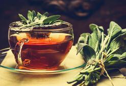 Dr. Ender Saraçtan tavsiye: Kadınlar adaçayı, erkekler mate çayı içsin
