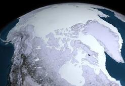 İlk hayvanlar buzul çağında nasıl hayatta kaldı
